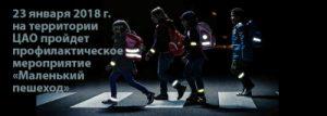 Особое внимание будет уделяться ношению световозвращающих элементов в одежде в темное время суток. Фото: пресс-служба УВД по ЦАО