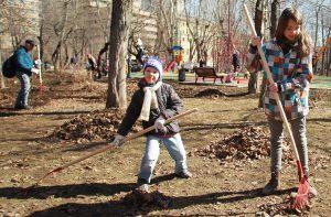 Члены районной Молодежной палаты поучаствуют в субботнике в Нескучном саду. Фото: Наталия Нечаева, «Вечерняя Москва»