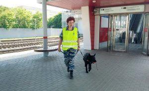 Станции московского метро будут охранять специально обученные собаки. Фото: официальный сайт мэра и Правительства Москвы