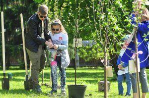 «Наше дерево»: москвичи подали более двух тысяч заявок для высадки именных саженцев. Фото: официальный сайт мэра Москвы