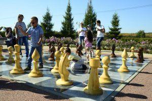 Международный день шахмат в Москве посетили 60 тыс человек. Фото: Анна Быкова