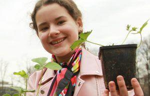 Около 3,5 тысяч растений высадят в ЦАО. Фото: Наталия Нечаева, «Вечерняя Москва»