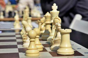 Турнир по шахматам состоялся в районе. Фото: Анна Быкова