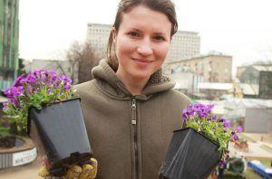 Работы по озеленению выполнили на нескольких улицах района. Фото: Наталия Нечаева, «Вечерняя Москва»