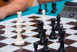 Более 30 человек приняли участие в районном шахматном турнире. Фото: сайт мэра Москвы