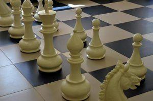Шахматный турнир в честь Дня Балтийского флота провели в районе. Фото: Анна Быкова