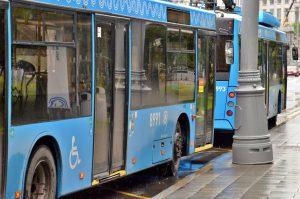 Автобусную остановку «Парк Горького» отменят для ряда автобусов. Фото: Анна Быкова