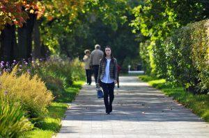 Жители Москвы могут поучаствовать в квесте-прогулке по паркам Москвы и получить подарки. Фото: Анна Быкова