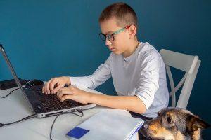 Столичные школьники смогут проверить свои знания по 24 предметам. Фото: сайт мэра Москвы
